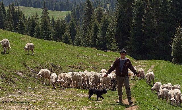 Trekking en Roumanie